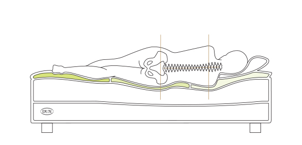 Illustration of a body lying on a DUX bed showing straight spinal alignment